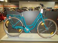 Pegasus Bici Italia 7