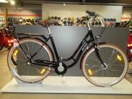 Pegasus Bici Italia 3