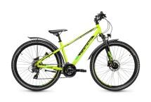 CONE Bikes CONE R260 K21 ND FG Disc Allroad green/yellow
