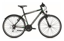 Trekkingbike MORRISON X 2.0