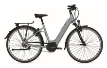 E-Bike FALTER E 9.8
