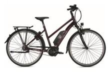 E-Bike Falter E 9.5