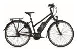 E-Bike Falter E 9.5 RT