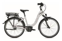 E-Bike Falter E 9.0 RT