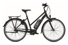 E-Bike Falter E 8.2 RT
