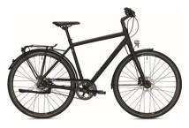 Citybike Falter U 8.0 SE