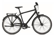 Citybike Falter U 6.0