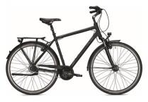 Citybike Falter C 6.0
