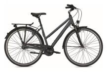 Citybike FALTER C 4.0