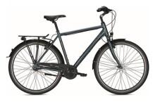 Citybike FALTER C 3.0