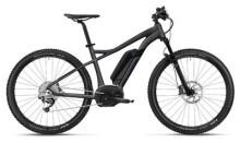 E-Bike FLYER Uproc1 Graphitgrau/Schwarz