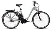 E-Bike FLYER T-Serie Jadegrün