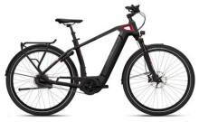 E-Bike FLYER Gotour6  Herren