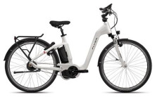E-Bike FLYER Gotour5