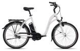 E-Bike FLYER C-Serie