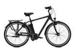 E-Bike Raleigh DOVER XXL