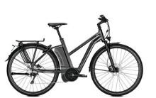 E-Bike Raleigh STOKER S10