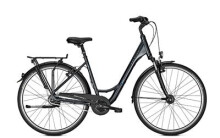 Citybike Raleigh UNICO DLX