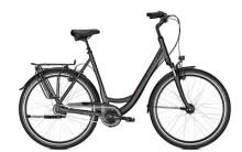 Raleigh Unico XXL, Citybike extra stark, bis 170 kg Gesamtgewicht belastbar.