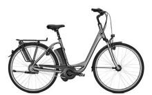E-Bike Raleigh DOVER 330