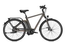 E-Bike Raleigh NEWGATE PREMIUM HARMONY