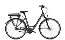 E-Bike Raleigh GROOVE 7R