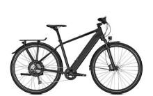 E-Bike Raleigh STANTON 11