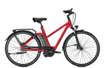 E-Bike Raleigh NEWGATE