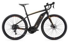 E-Bike GIANT ToughRoad E+ GX