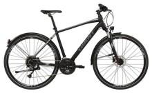 Trekkingbike GIANT Roam EX