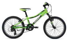 Kinder / Jugend GIANT XtC jr. 20""