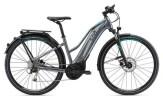E-Bike Liv Amiti-E+ 1 LTD Silver