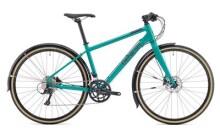 Trekkingbike Genesis Skyline 20 W