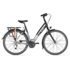 Trekkingbike Gazelle Chamonix T27