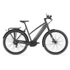 E-Bike Gazelle CityZen Speed