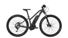 E-Bike Conway eMR 529 -40 cm