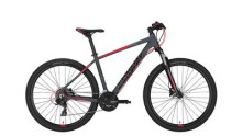 Mountainbike Conway MS 427 grey -46 cm