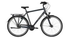 """Citybike Victoria Spezial 5.5 Herren 28"""" darkgrey/blue"""