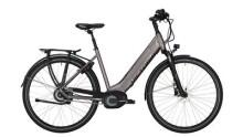 "E-Bike Victoria e Trekking 11.9 Wave 28"" grey matt/red"