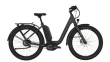 "E-Bike Victoria e Urban 11.9 Wave 27"" wetasphalt matt/silver"