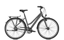 Trekkingbike Kalkhoff AGATTU PREMIUM 8