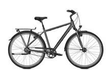 Citybike Kalkhoff AGATTU PREMIUM 8