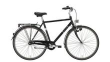 Citybike Excelsior TOURING NIRO 28/55