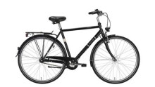 Citybike Excelsior TOURING 28/55 ND