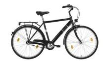 Trekkingbike Excelsior ROADCRUISER ND 28/55