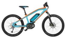 E-Bike EBIKE GULF