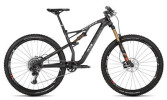 Mountainbike Rotwild R.X2 TRANSALP (29) ULTRA
