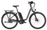 E-Bike Victoria eTrekking 7.9 Deep grey matt/red
