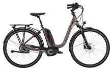 E-Bike Victoria eTrekking 7.9 Deep grey matt/red