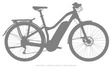 E-Bike Haibike SDURO Trekking 1.0 Damen
